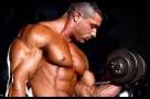 body building 1